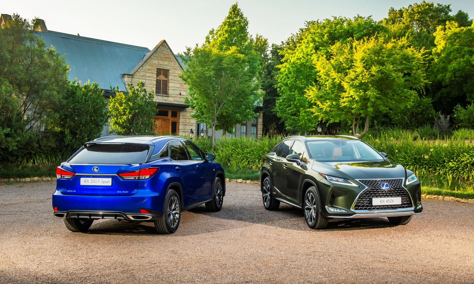 Updated Lexus RX range